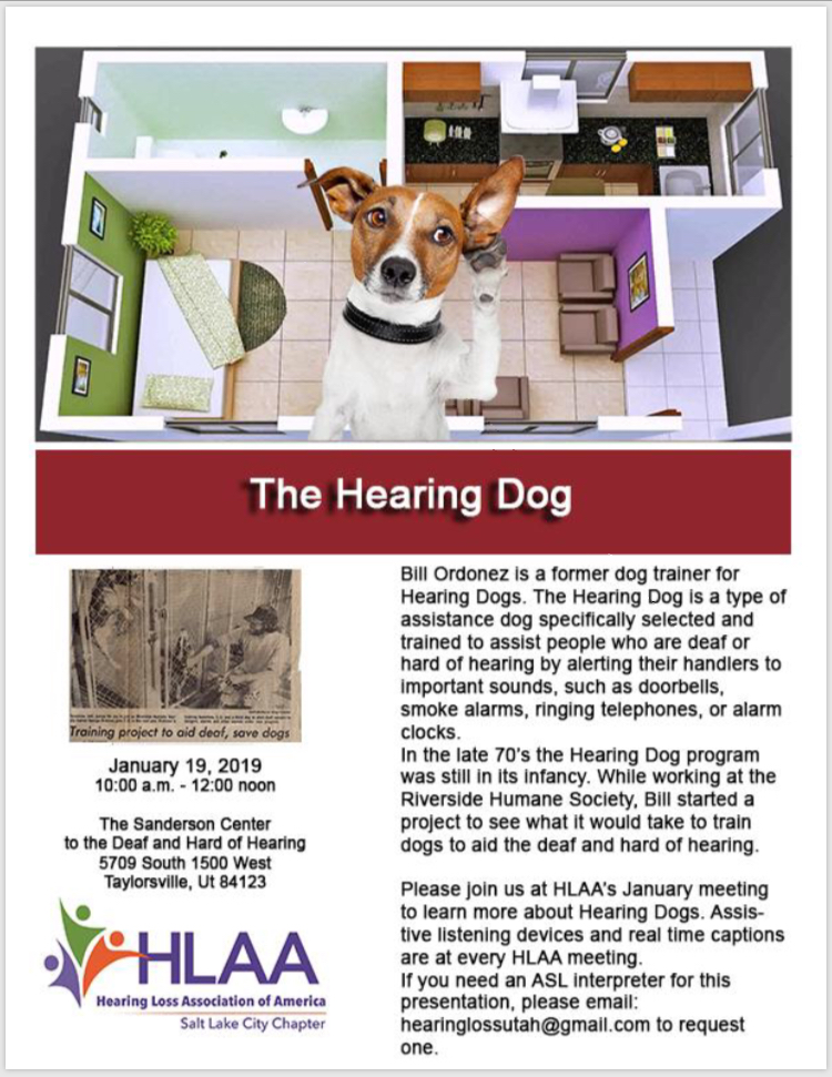 hearing dog flyer